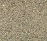 PedrerÍa gris