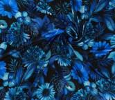Dis.g0169 pier azul