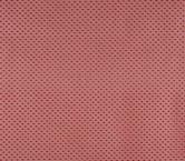 Red plumeti