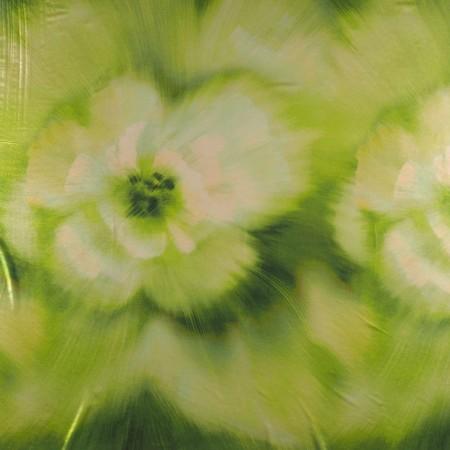 Georgette laminado pano 80 cm verde