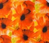 Dis.g0444 s/584 naranja